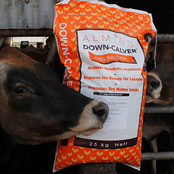 Bio-Chlor Down Calver Feed